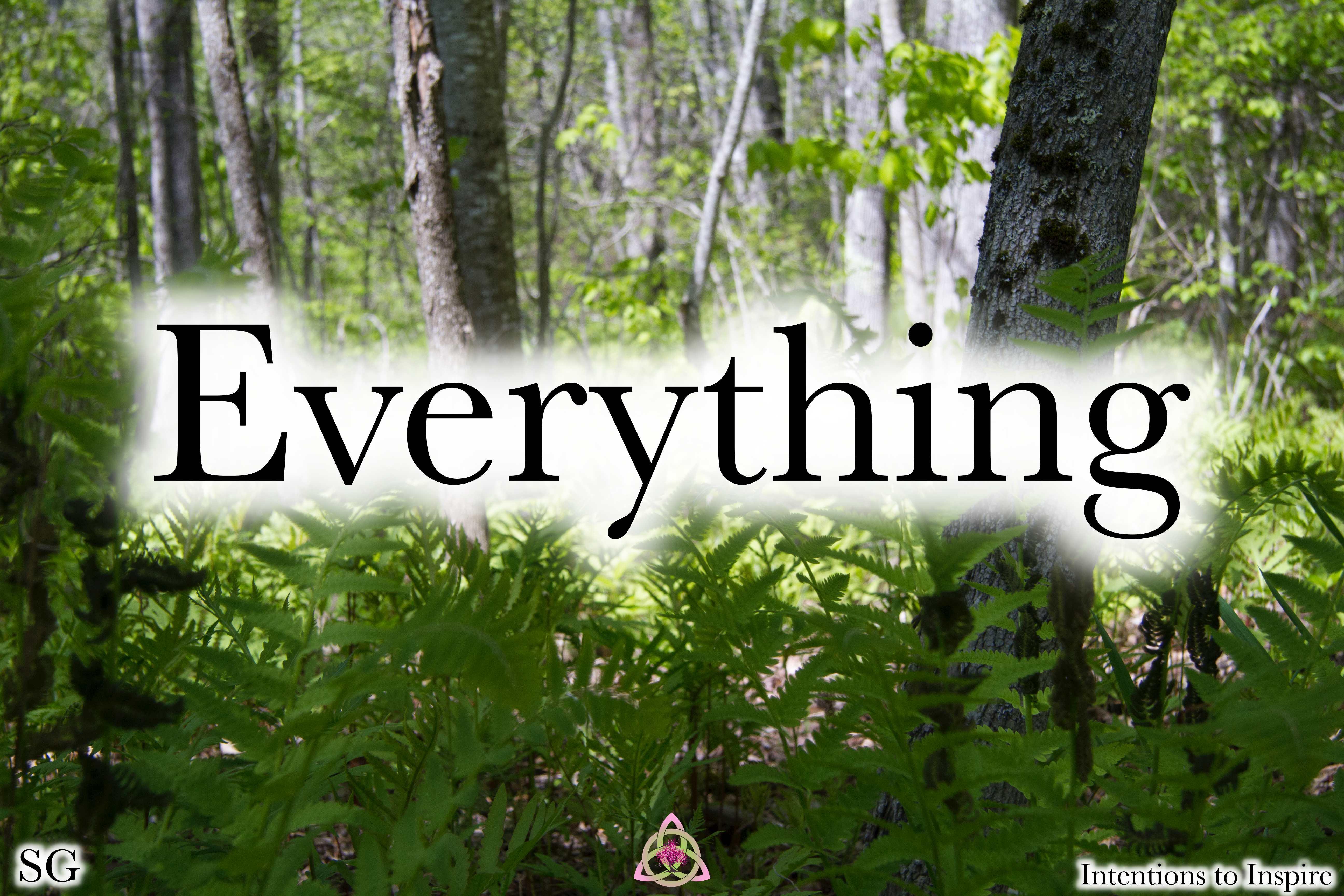 138-20-5-Everything-SG-2