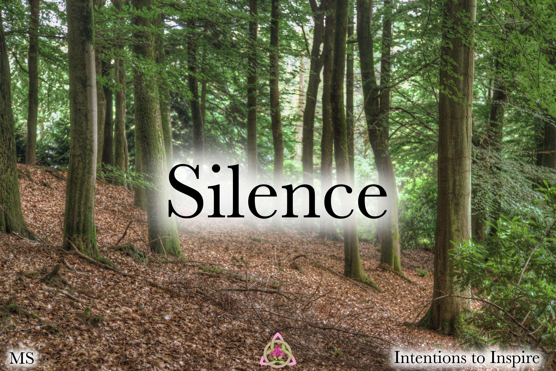 281-41-1-Silence-MS 2