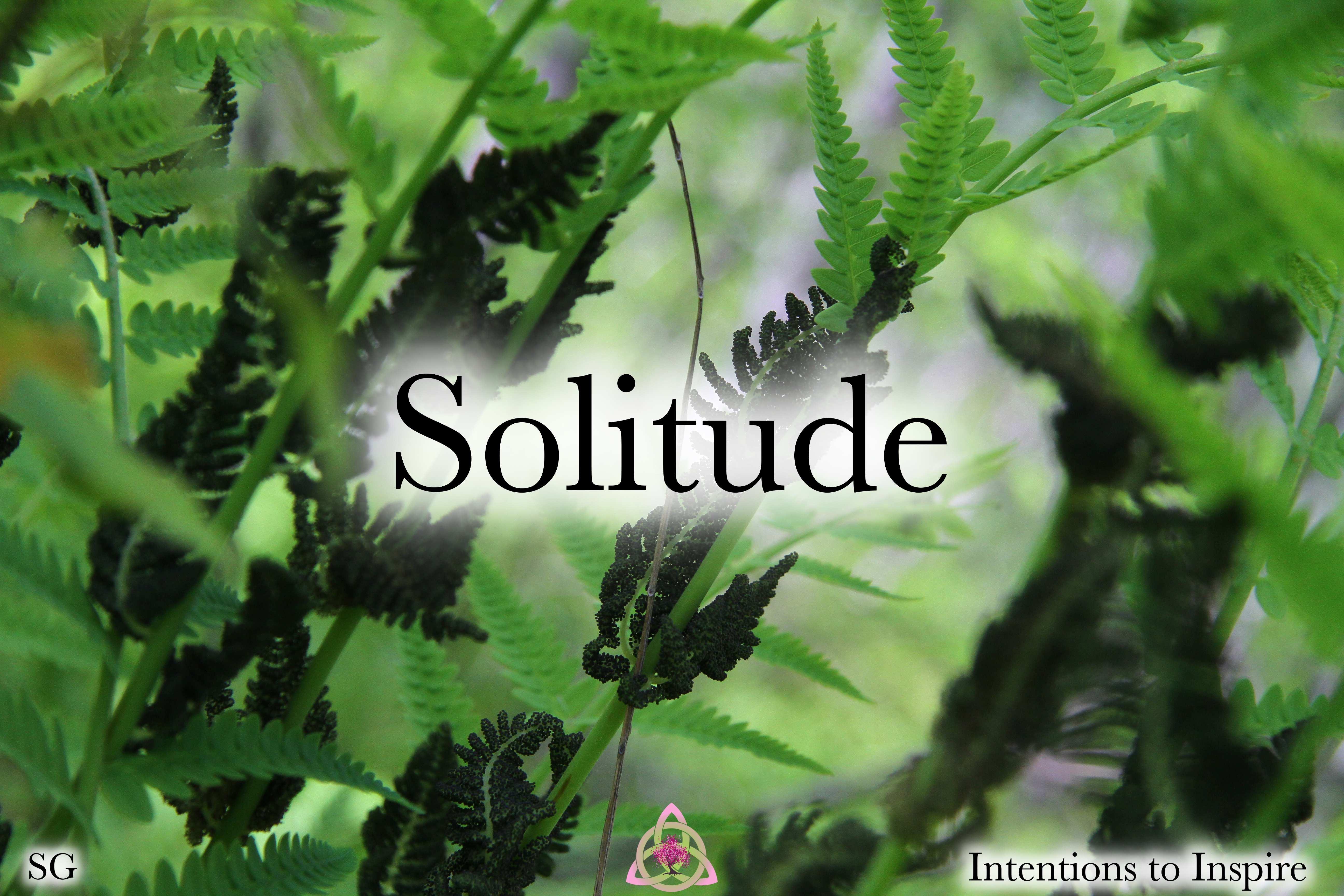 306-44-5-Solitude-SG 2
