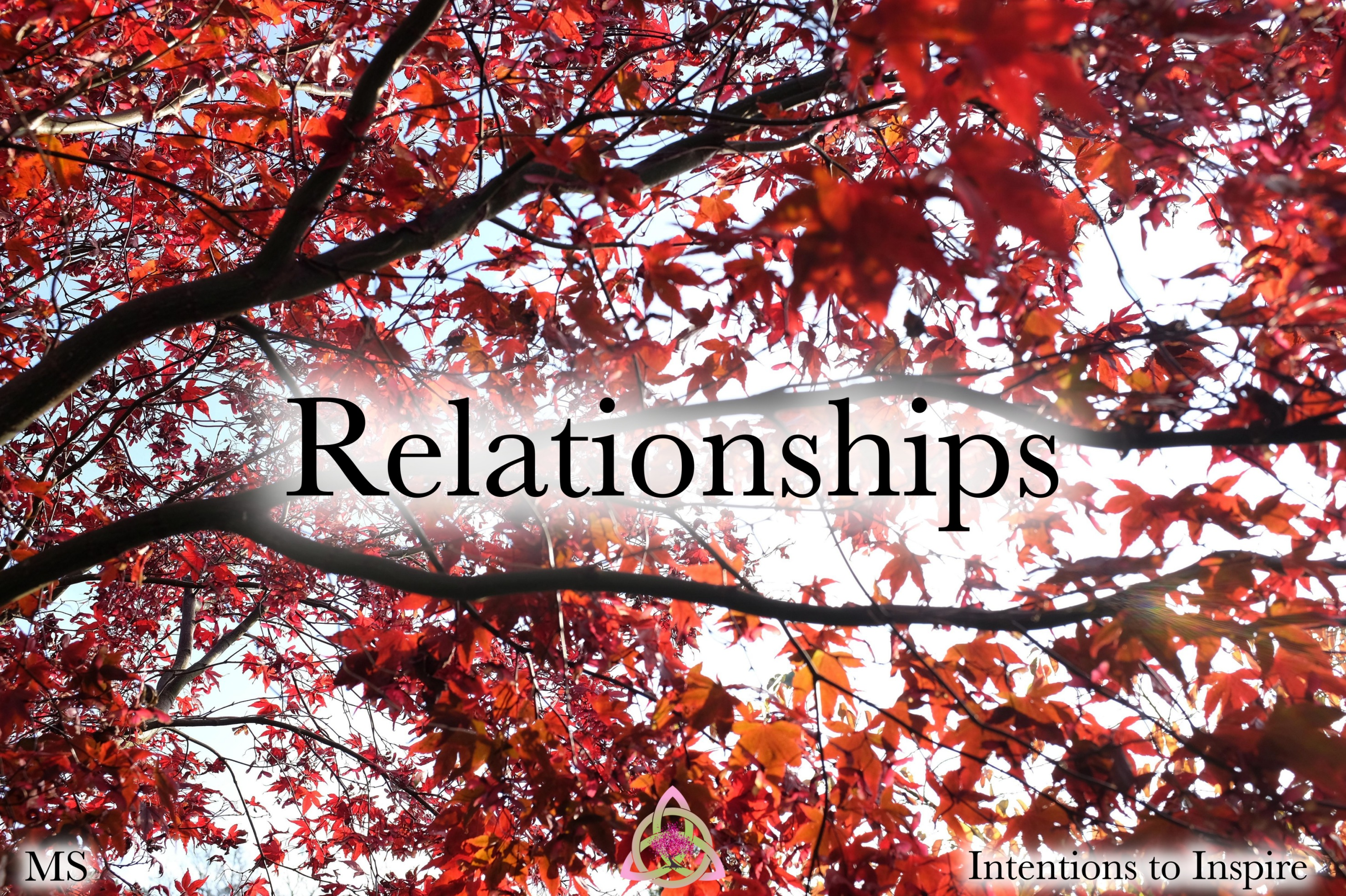 273-39-7-Relationships-MS 2